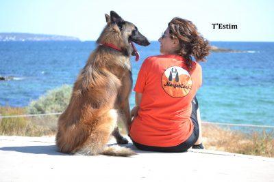 MargotCans, Socialización y Adiestramiento Canino. Mallorca Image