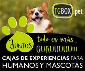TGBOX
