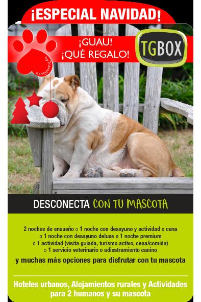 DesconectaConTuMascota_NAVIDAD-TGBOX