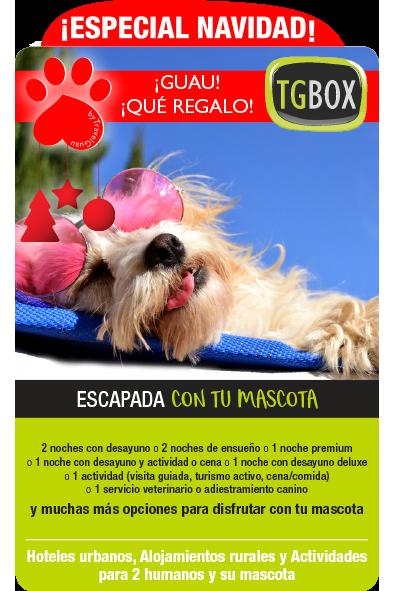 EscapadaConTuMascota_NAVIDAD-TGBOX