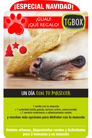 UnDiaConTuMascota_NAVIDAD-TGBOX